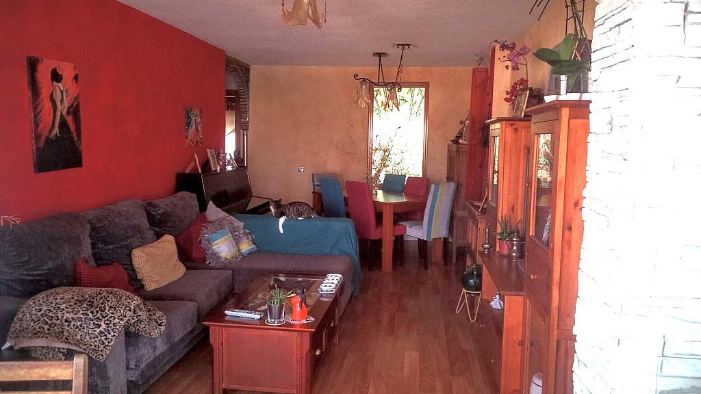Salón - Piso en alquiler en calle Pintor Pedro Camacho, Garbinet en Alicante/Alacant - 323921094