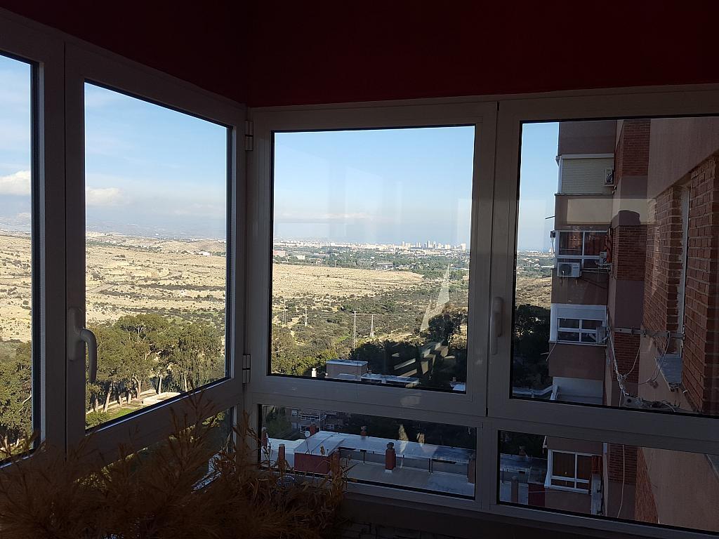 Vistas - Piso en alquiler en calle Pintor Pedro Camacho, Garbinet en Alicante/Alacant - 366809101