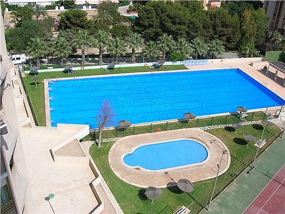 Piso en alquiler en Cabo de las Huertas en Alicante/Alacant - 297423773