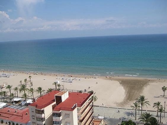 Piso en alquiler en Playa de San Juan en Alicante/Alacant - 312510786