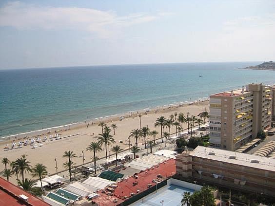 Piso en alquiler en Playa de San Juan en Alicante/Alacant - 312510789