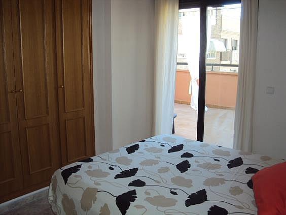 Ático en alquiler en San Blas - Santo Domingo en Alicante/Alacant - 330393448