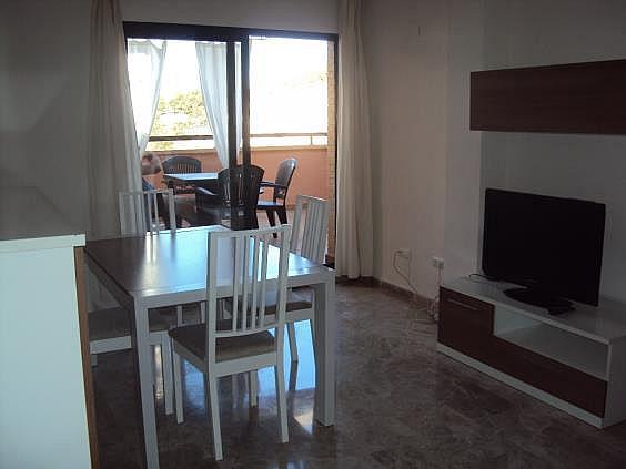 Ático en alquiler en San Blas - Santo Domingo en Alicante/Alacant - 330393460