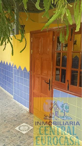 Foto14 - Casa en alquiler en Santa Lucía de Tirajana - 331419425