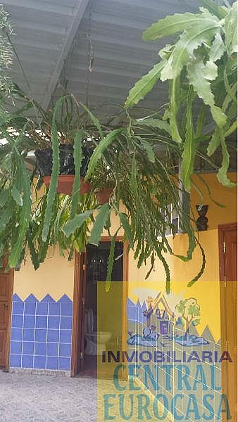 Foto15 - Casa en alquiler en Santa Lucía de Tirajana - 331419428