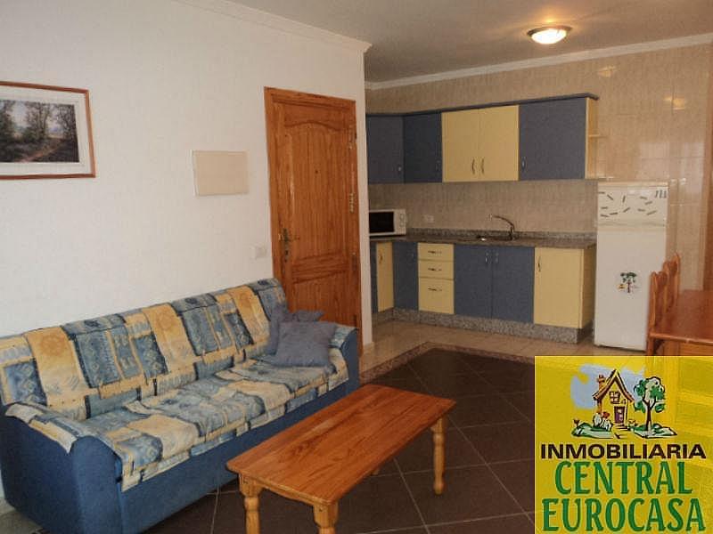 Foto1 - Piso en alquiler en Santa Lucía de Tirajana - 331419464