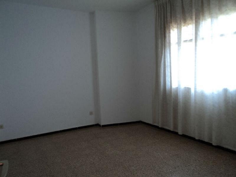 Foto4 - Piso en alquiler en Santa Lucía de Tirajana - 331419626