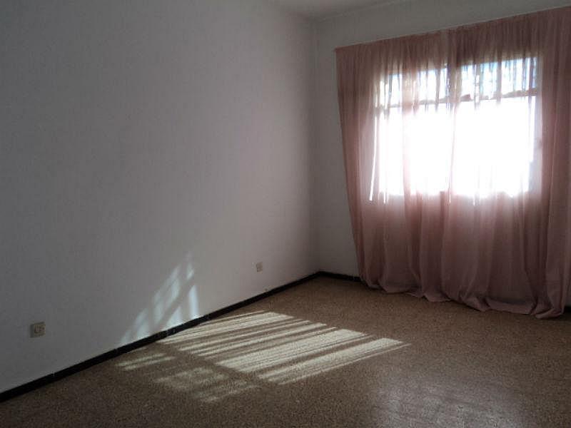 Foto6 - Piso en alquiler en Santa Lucía de Tirajana - 331419632