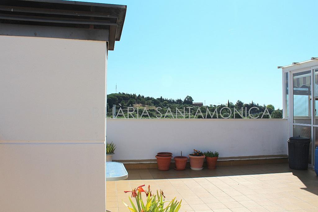 Foto - Apartamento en venta en calle Ausias March, Sant Pere en Tordera - 256425895