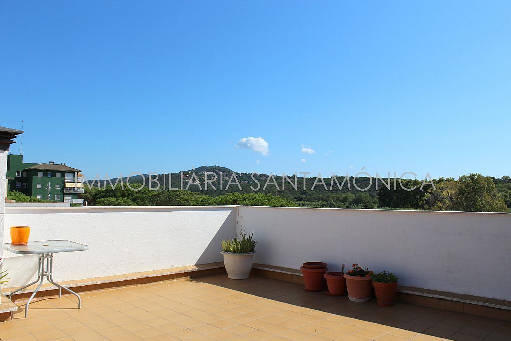 Foto - Apartamento en venta en calle Ausias March, Sant Pere en Tordera - 256425934