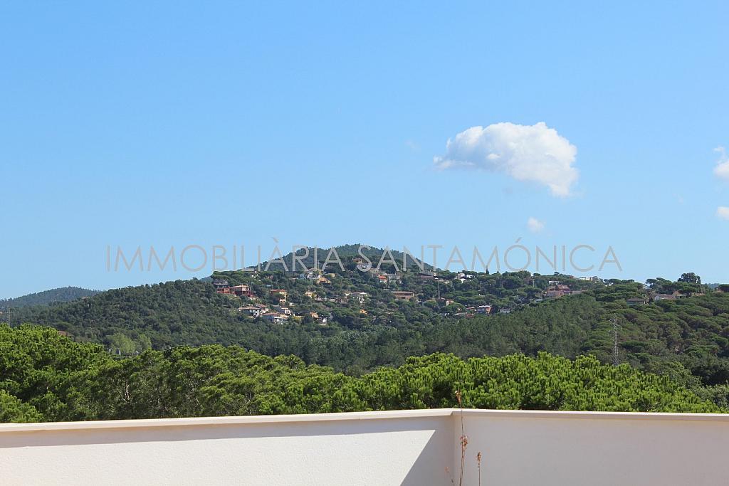 Foto - Apartamento en venta en calle Ausias March, Sant Pere en Tordera - 256425952