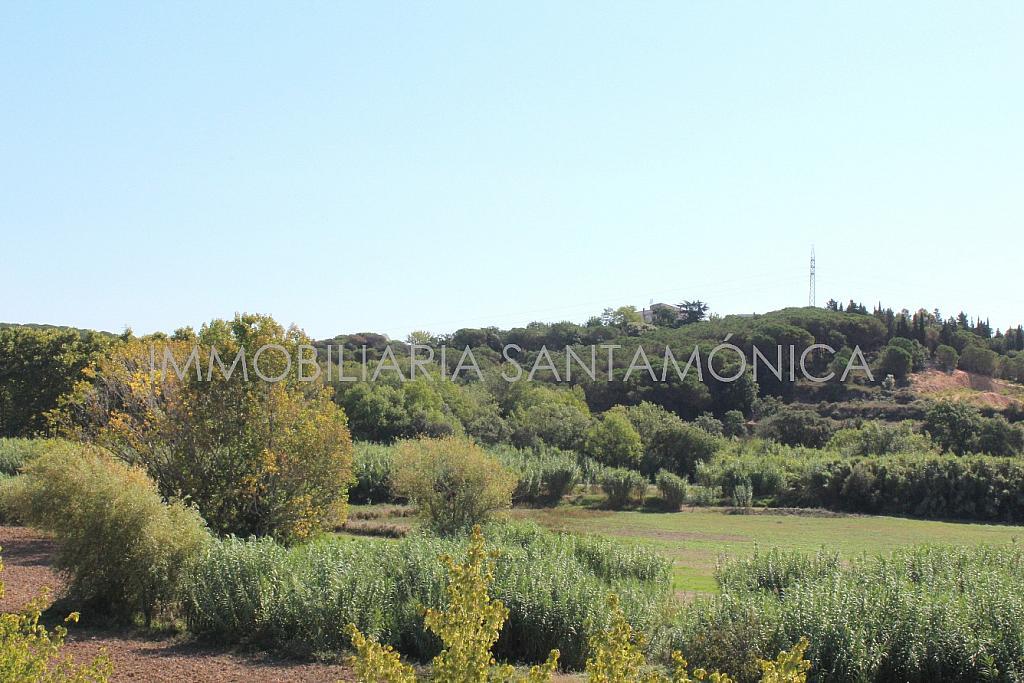Foto - Apartamento en venta en calle Ausias March, Sant Pere en Tordera - 256425994