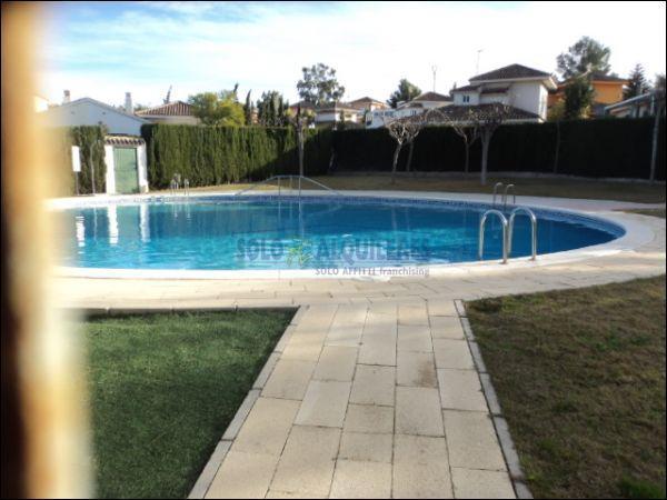 PISCINA - Chalet en alquiler en calle Torres Blancas, Alcayna - 69528333