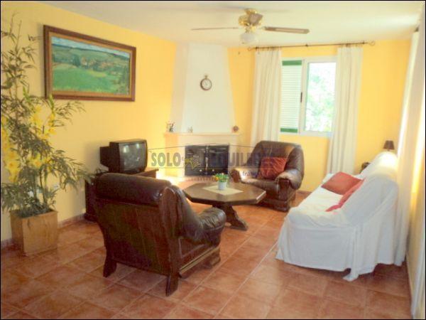 SALON - Chalet en alquiler en calle Torres Blancas, Alcayna - 69528345