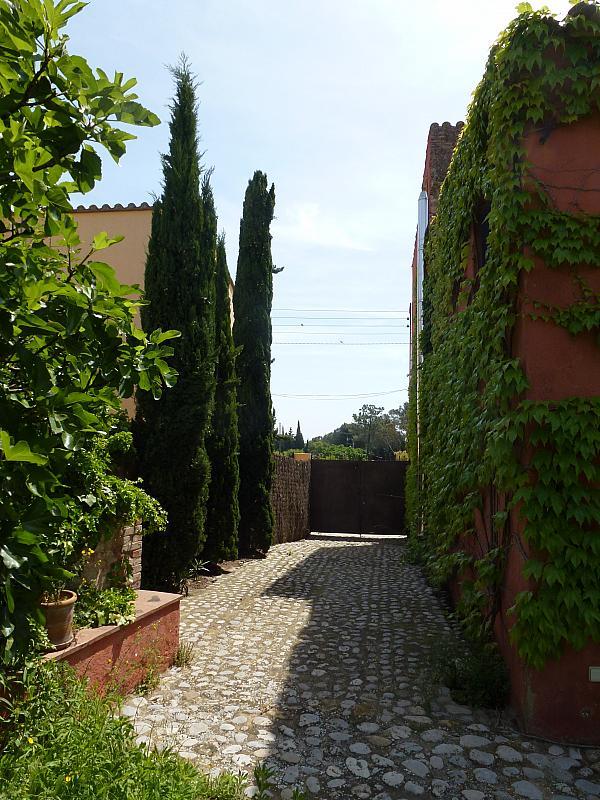 Jardín - Casa en alquiler en calle Eres, Sant Miquel de Fluvià - 219988247
