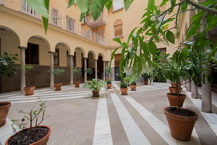 Foto - Ático en alquiler en calle Granada, Centro en Granada - 260739009