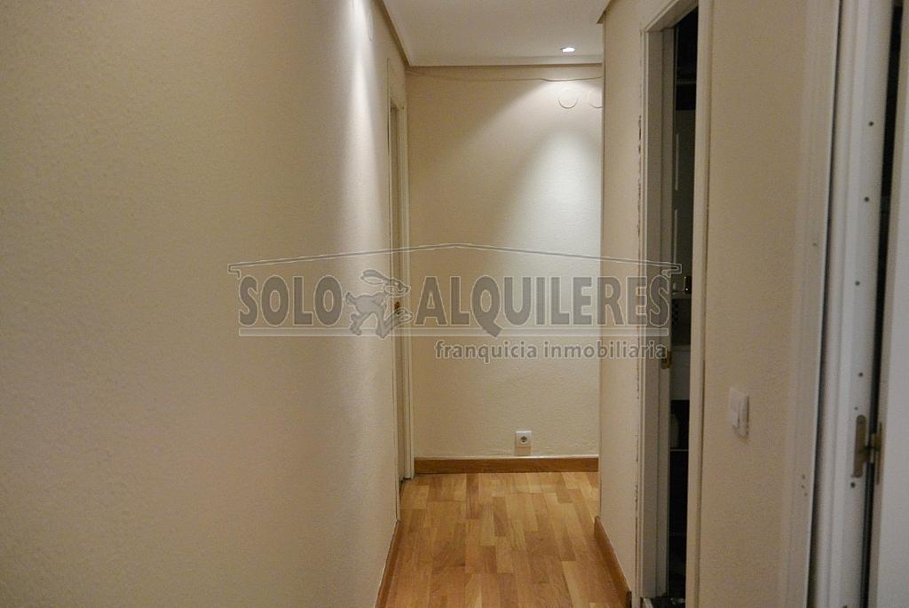DSC_4238.JPG - Piso en alquiler en Milán-Pumarin-Pontón de Vaqueros en Oviedo - 324963726