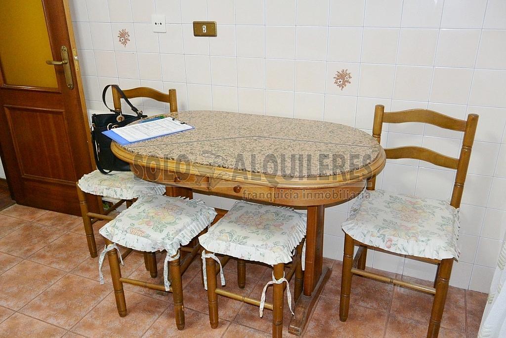DSC_1280.JPG - Piso en alquiler en Oviedo - 293659605