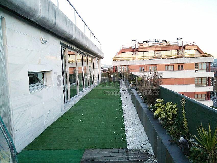 183712786.jpg - Apartamento en alquiler en Casco Histórico en Oviedo - 383377835