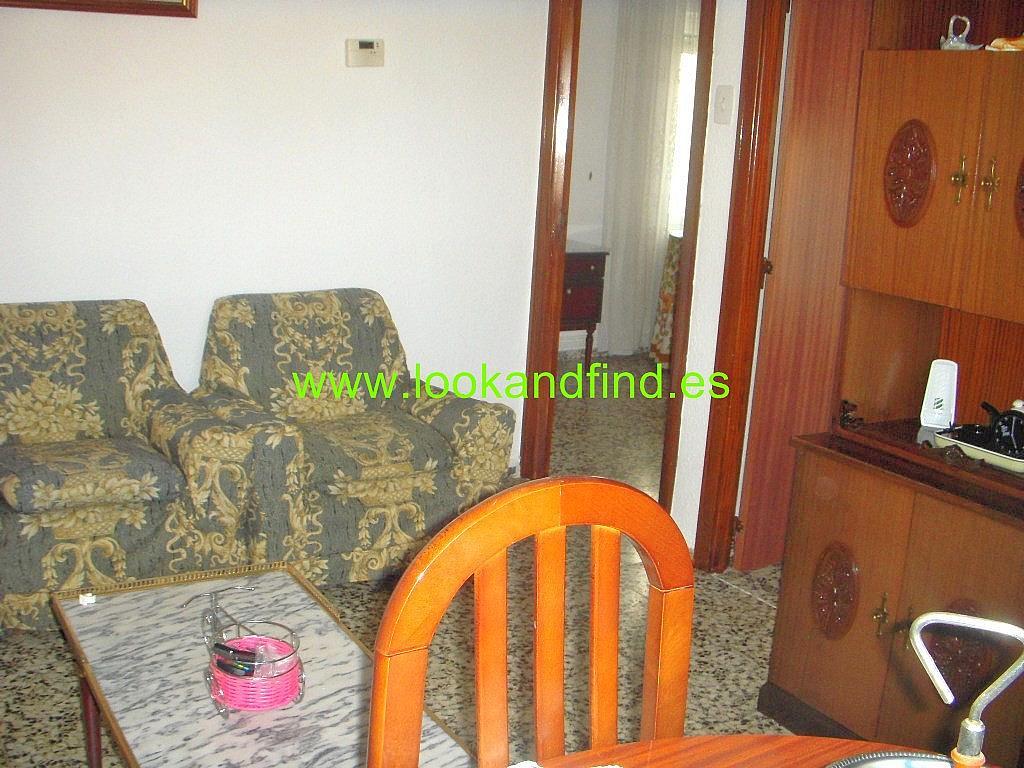 Salón - Piso en alquiler en calle Federico Anaya, Chinchibarra en Salamanca - 294036999