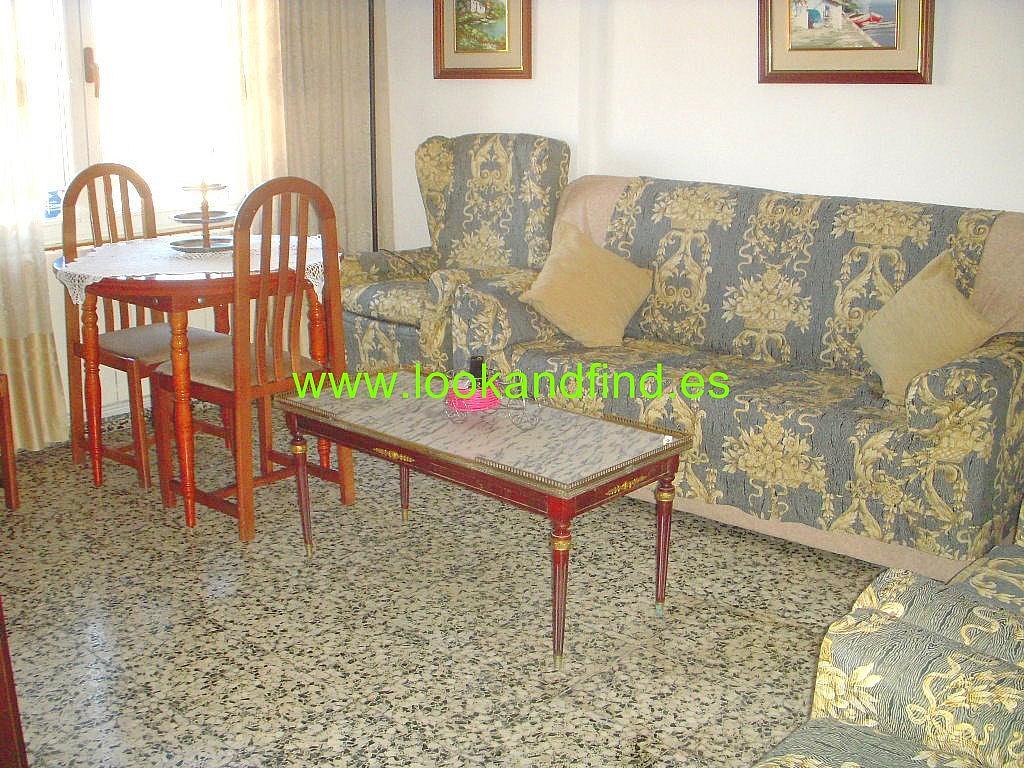 Salón - Piso en alquiler en calle Federico Anaya, Chinchibarra en Salamanca - 294037005