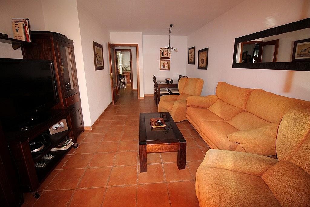 Salón - Piso en alquiler de temporada en calle Federico Mompou, Torremolinos - 316738227