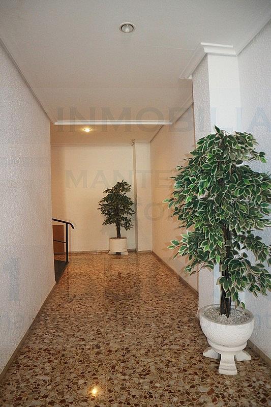 Patio - Piso en alquiler en calle San Pascual, Picanya - 316018154