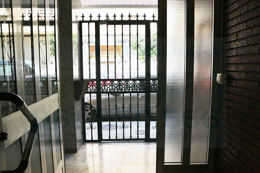 Patio - Piso en alquiler en calle San Pascual, Picanya - 316018167
