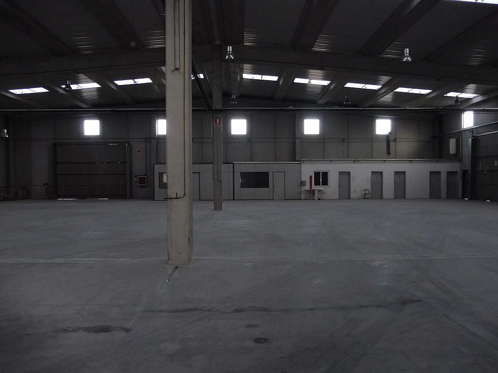 Nave industrial en alquiler en calle Riells, Riells - 251621762