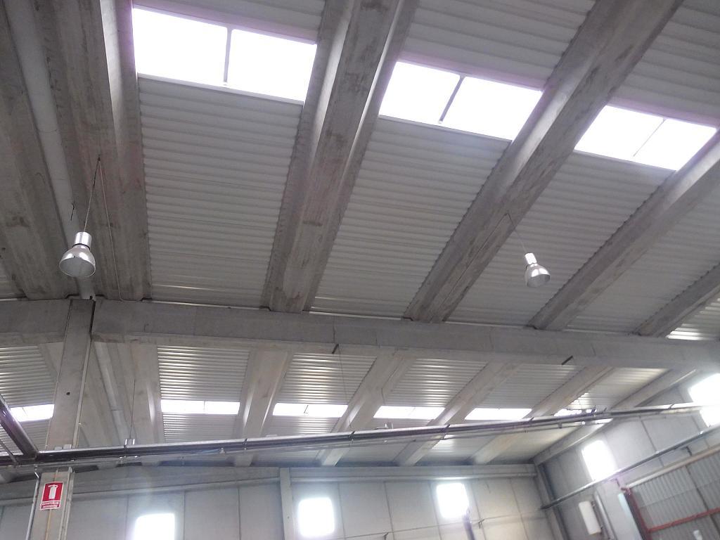 Nave industrial en alquiler en calle Riells, Riells - 251621915