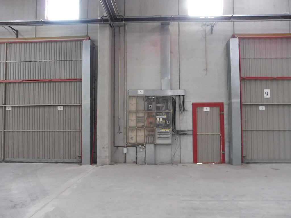 Nave industrial en alquiler en calle Riells, Riells - 251621946
