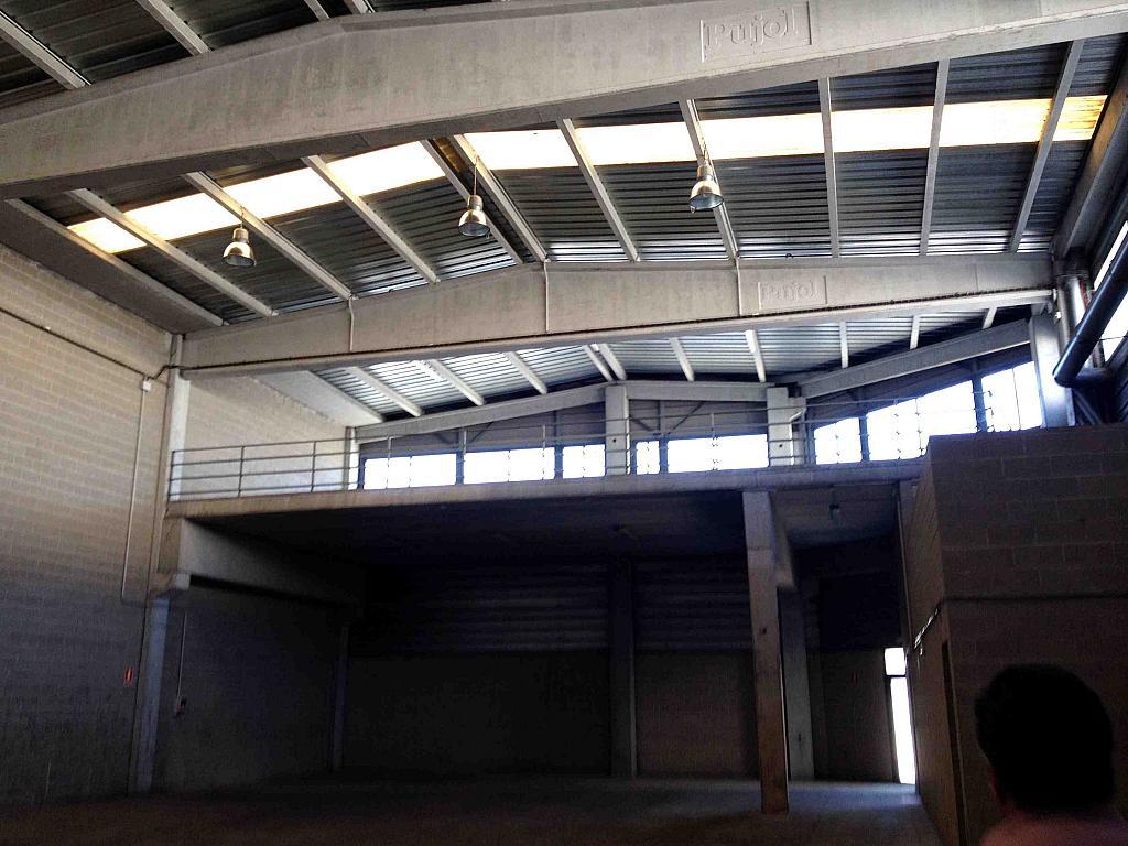 Planta baja - Nave industrial en alquiler en calle Moli Guineu, Can Catessus en Sant Sadurní d´Anoia - 244026110