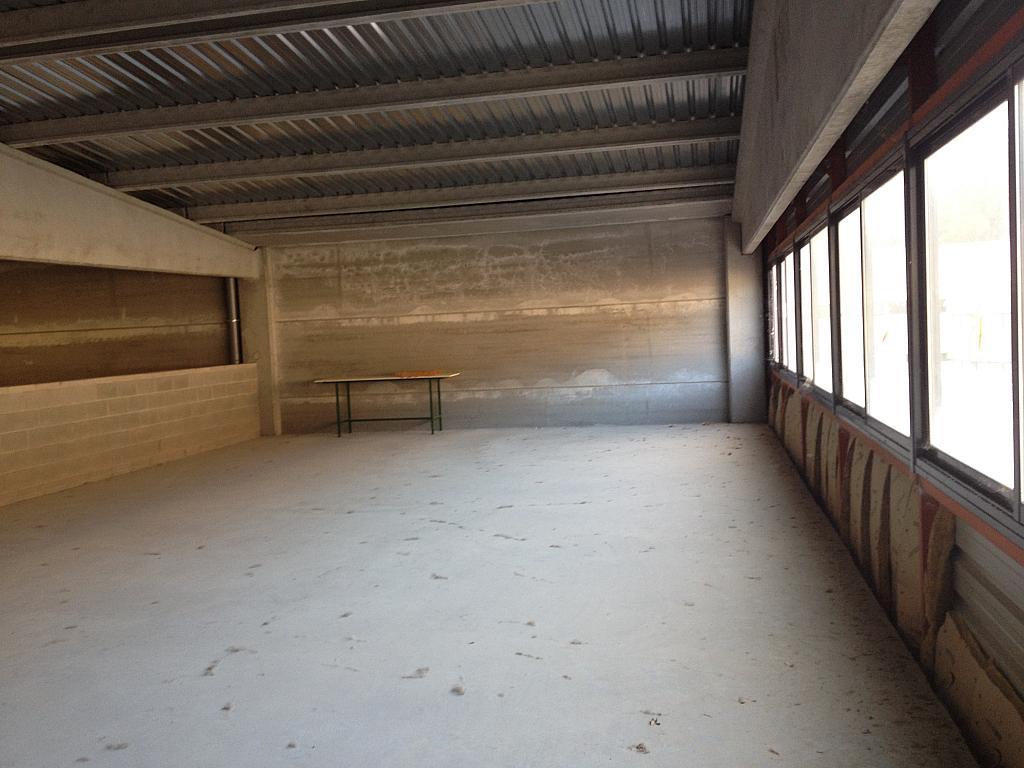 Planta altillo - Nave industrial en alquiler en calle Moli Guineu, Can Catessus en Sant Sadurní d´Anoia - 244026128