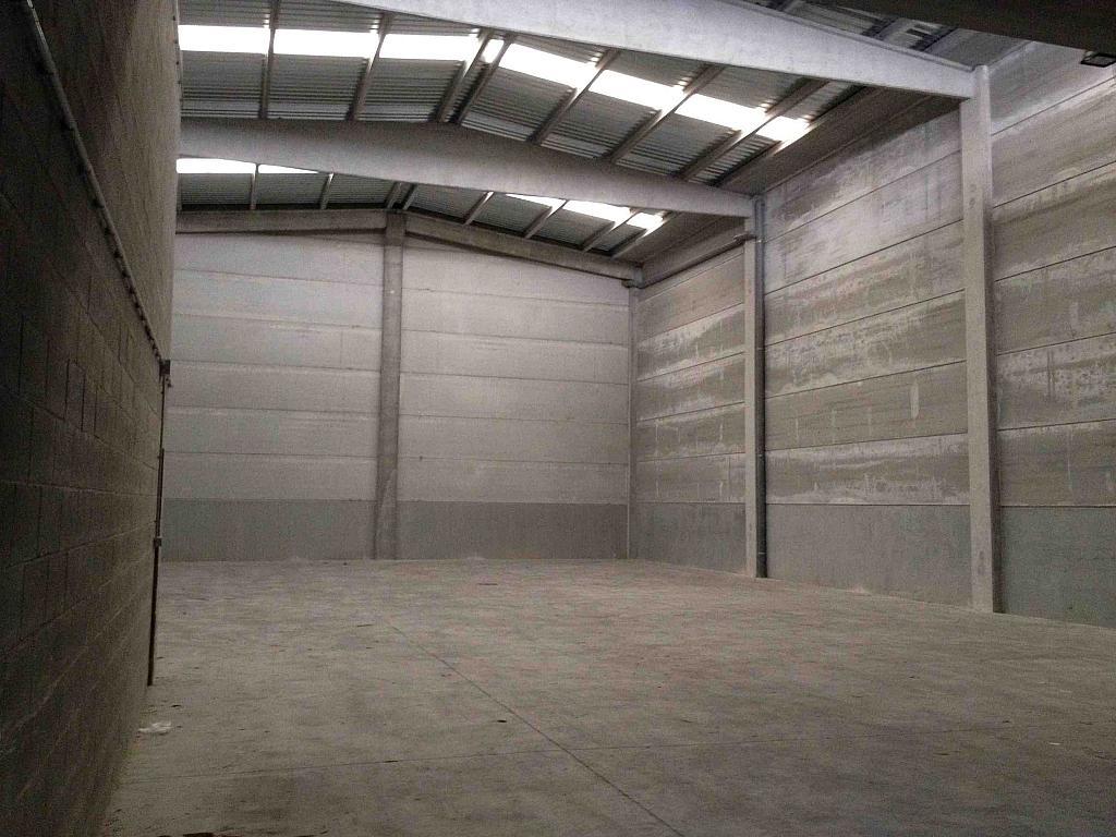 Planta baja - Nave industrial en alquiler en calle Moli Guineu, Can Catessus en Sant Sadurní d´Anoia - 244026133