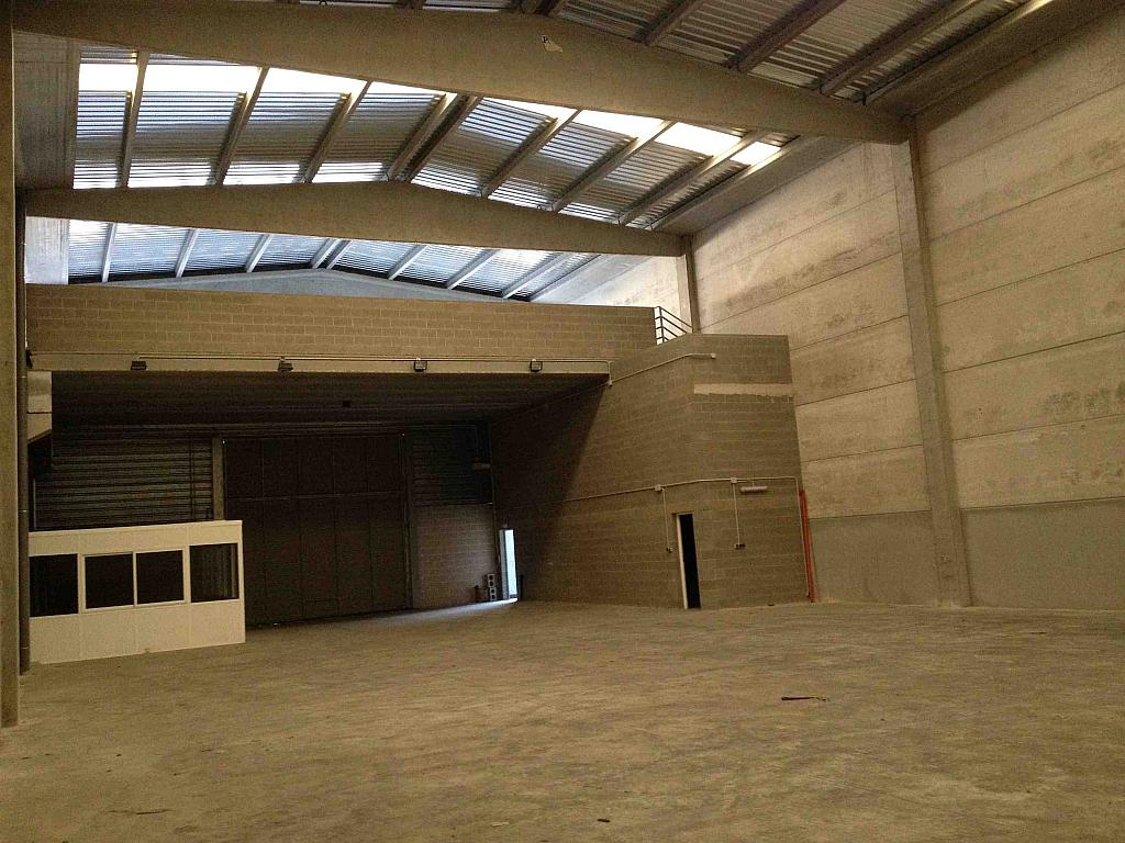 Planta baja - Nave industrial en alquiler en calle Moli Guineu, Can Catessus en Sant Sadurní d´Anoia - 244026149