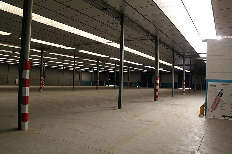 Planta baja - Nave industrial en alquiler en calle Carlos Buigas, Sant Quirze del Vallès - 252001022