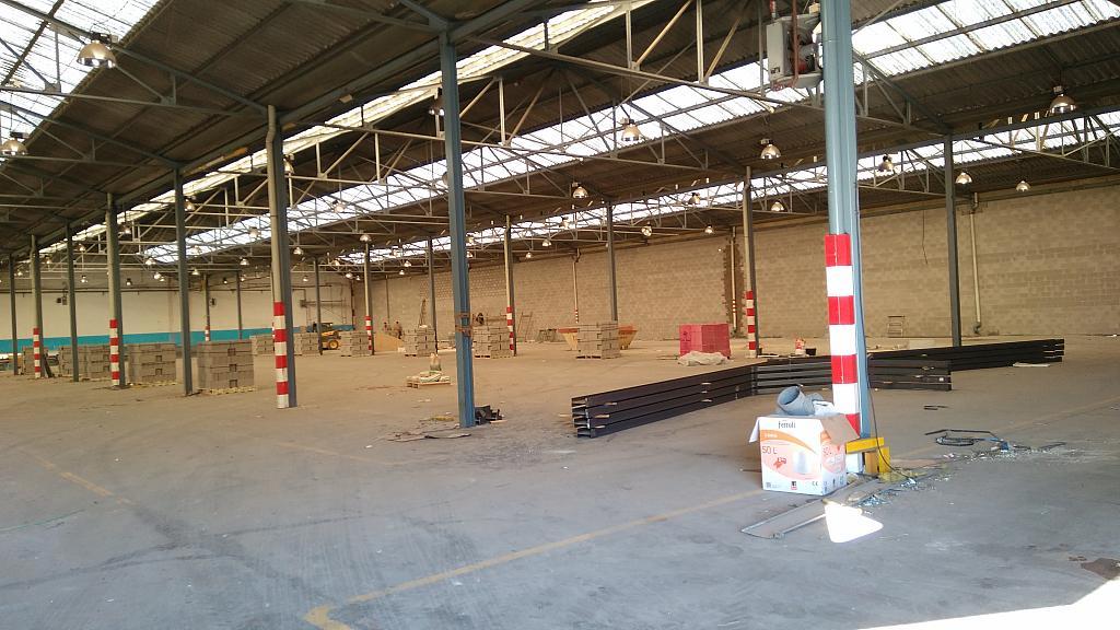 Planta baja - Nave industrial en alquiler en calle Carlos Buigas, Sant Quirze del Vallès - 252001128