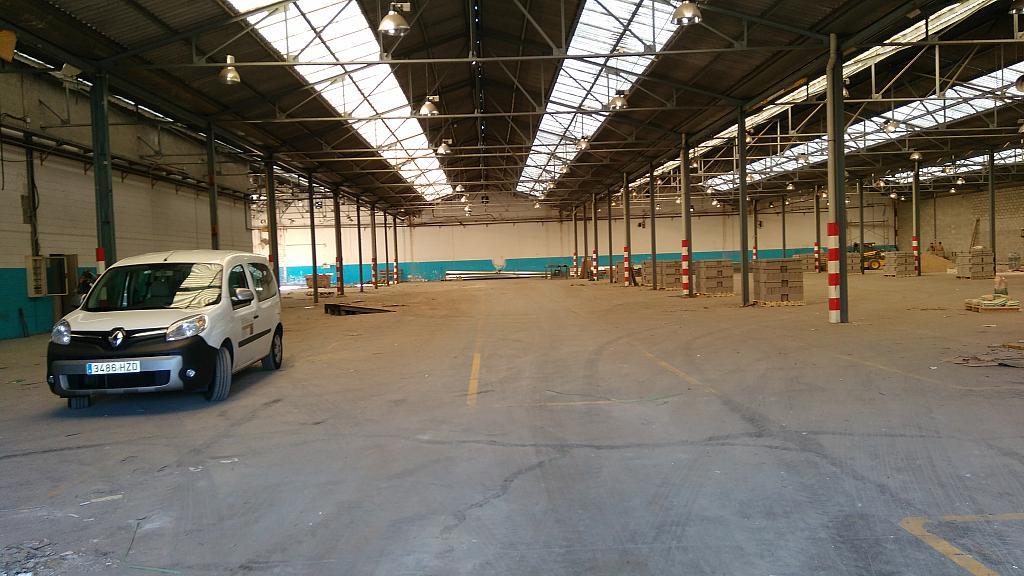 Planta baja - Nave industrial en alquiler en calle Carlos Buigas, Sant Quirze del Vallès - 252001133