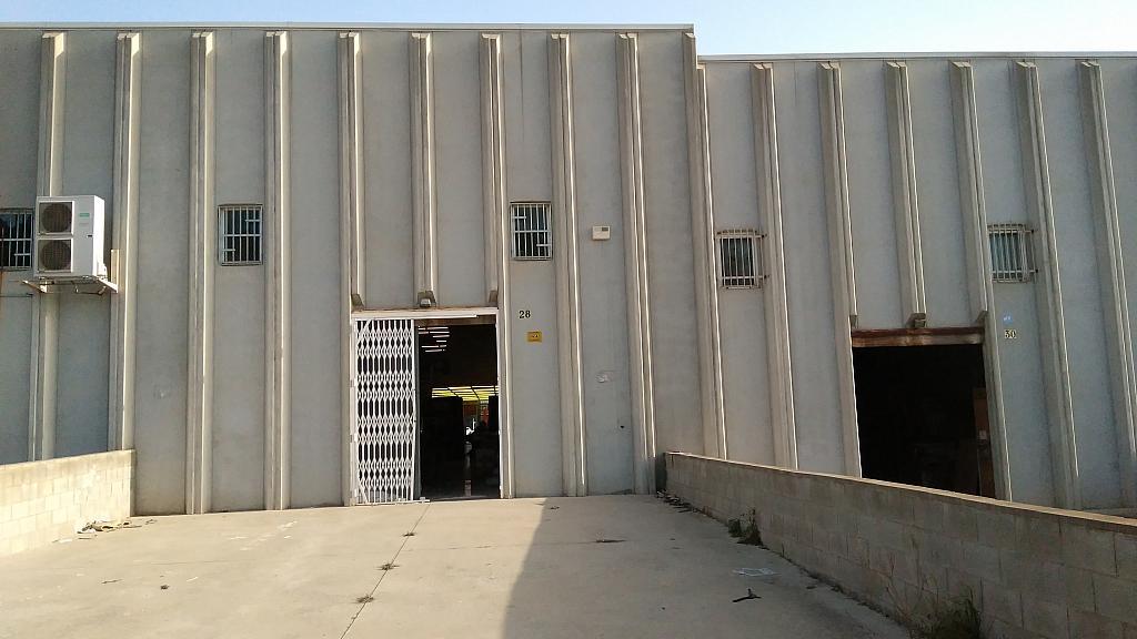 Patio trasero - Nave industrial en alquiler en calle Congost, Camí Fondo en Martorell - 259240315