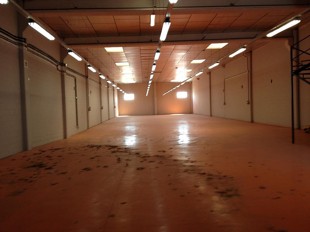 Planta baja - Nave industrial en alquiler en calle Colom, Segle XX en Terrassa - 264373260
