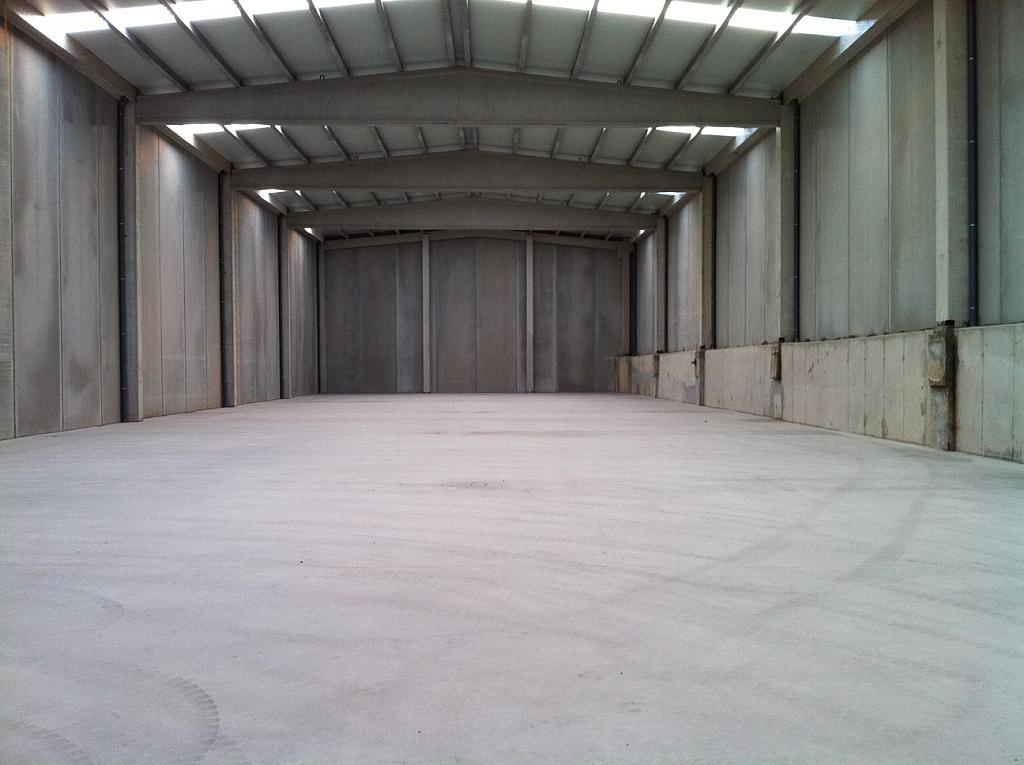 Planta baja - Nave industrial en alquiler en calle Polingesa, Campllong - 272265964