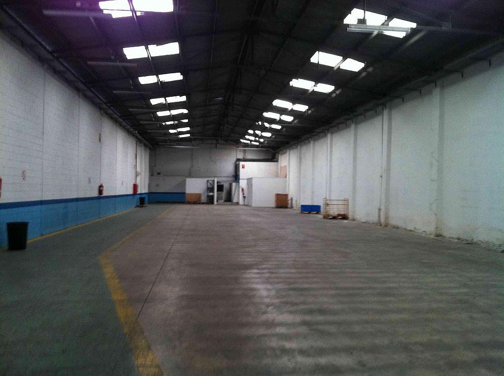 Planta baja - Nave industrial en alquiler en calle Marina, Almeda en Cornellà de Llobregat - 280327297