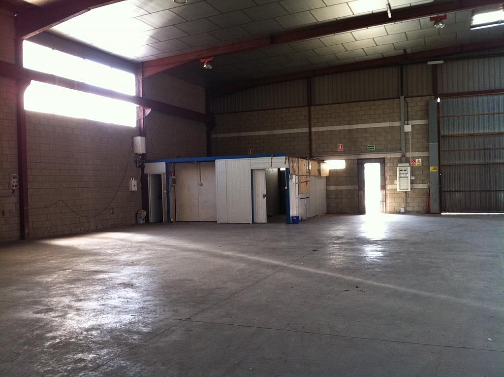 Detalles - Nave industrial en alquiler en calle Narcís Monturiol, Barri antic en Manresa - 240061135