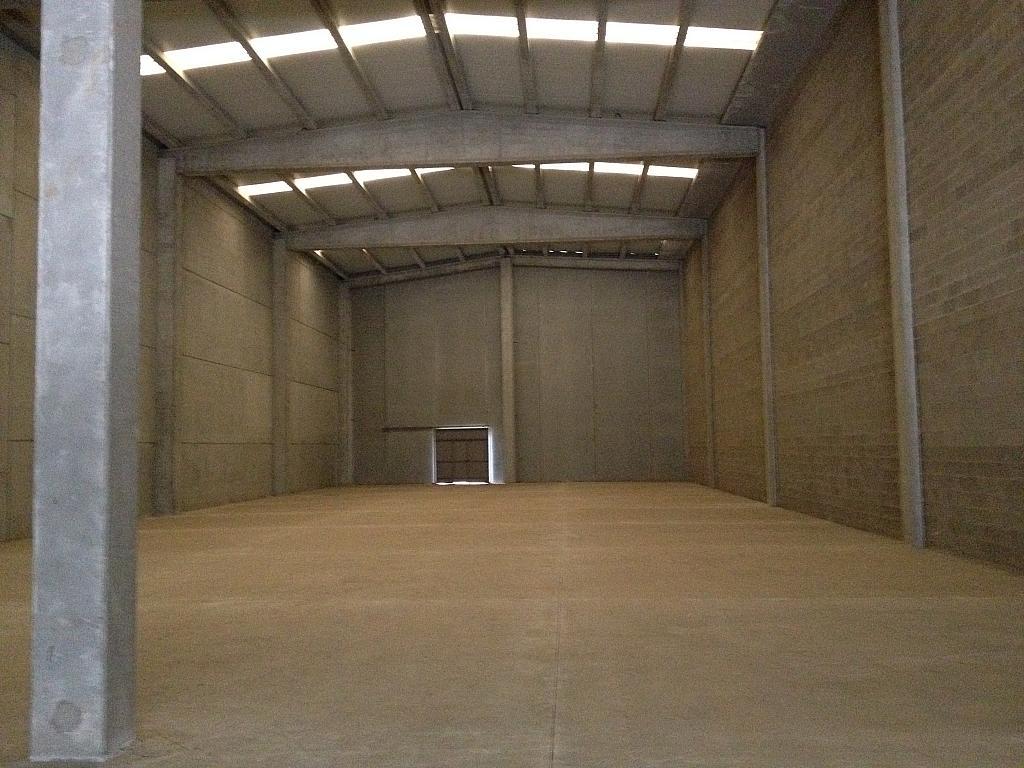 Planta baja - Nave industrial en alquiler en calle Jurats, La Plana en Sant Andreu de la Barca - 240066261