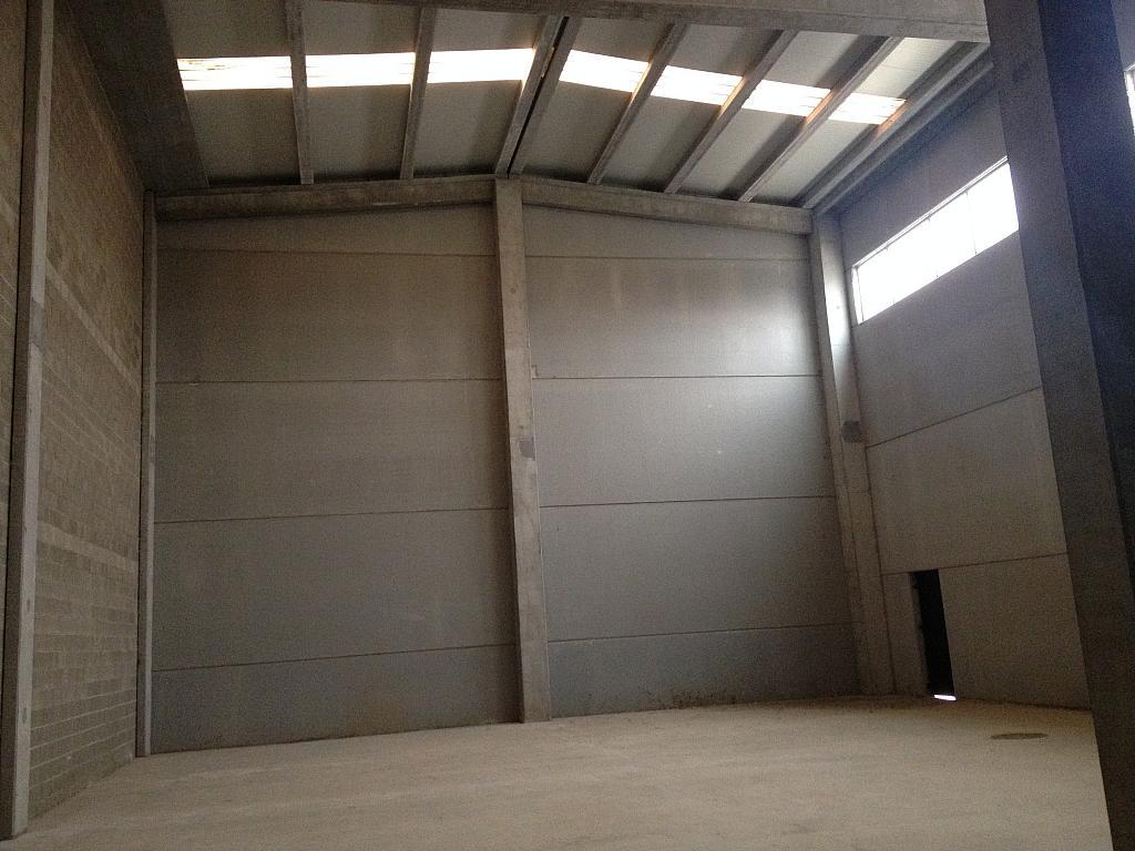 Planta baja - Nave industrial en alquiler en calle Jurats, La Plana en Sant Andreu de la Barca - 240066374