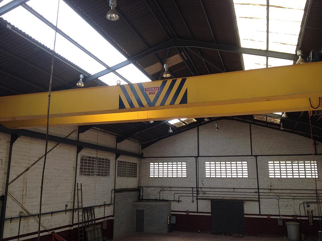 Detalles - Nave industrial en alquiler en calle Riera de la Salut, La Salut en Sant Feliu de Llobregat - 240100003