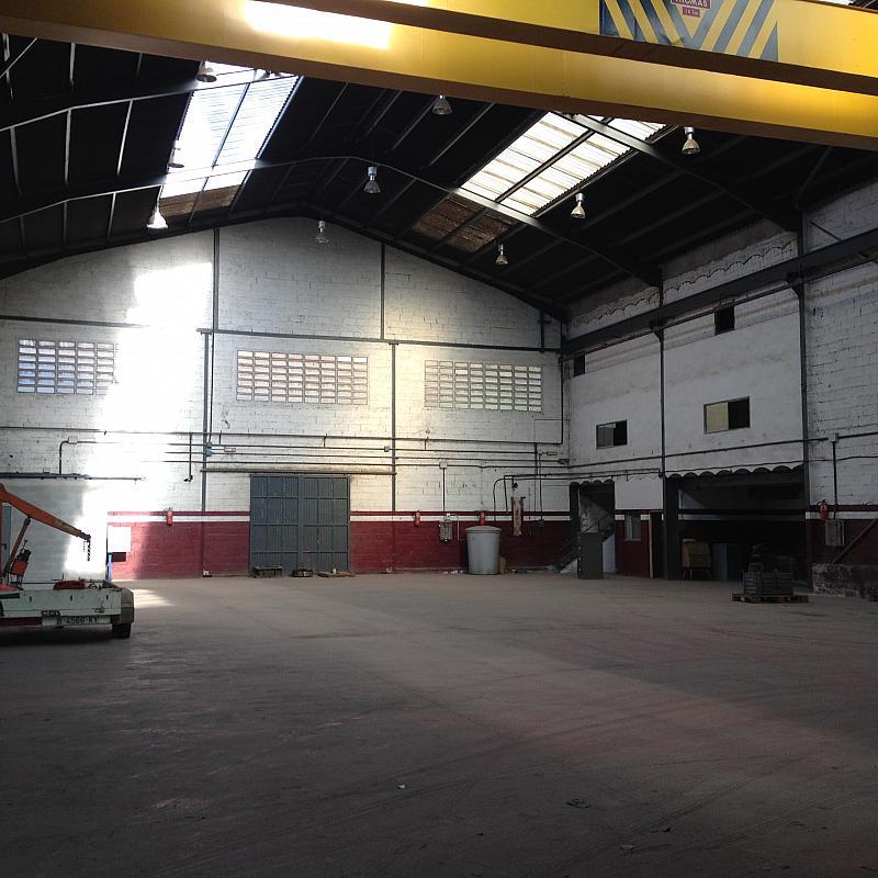 Planta baja - Nave industrial en alquiler en calle Riera de la Salut, La Salut en Sant Feliu de Llobregat - 240100062