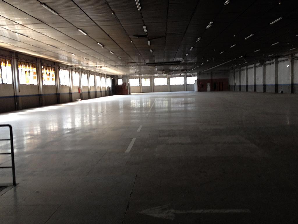 Planta baja - Nave industrial en alquiler en calle Ramón Caselles, Polígon Sud-Oest en Sabadell - 240347826