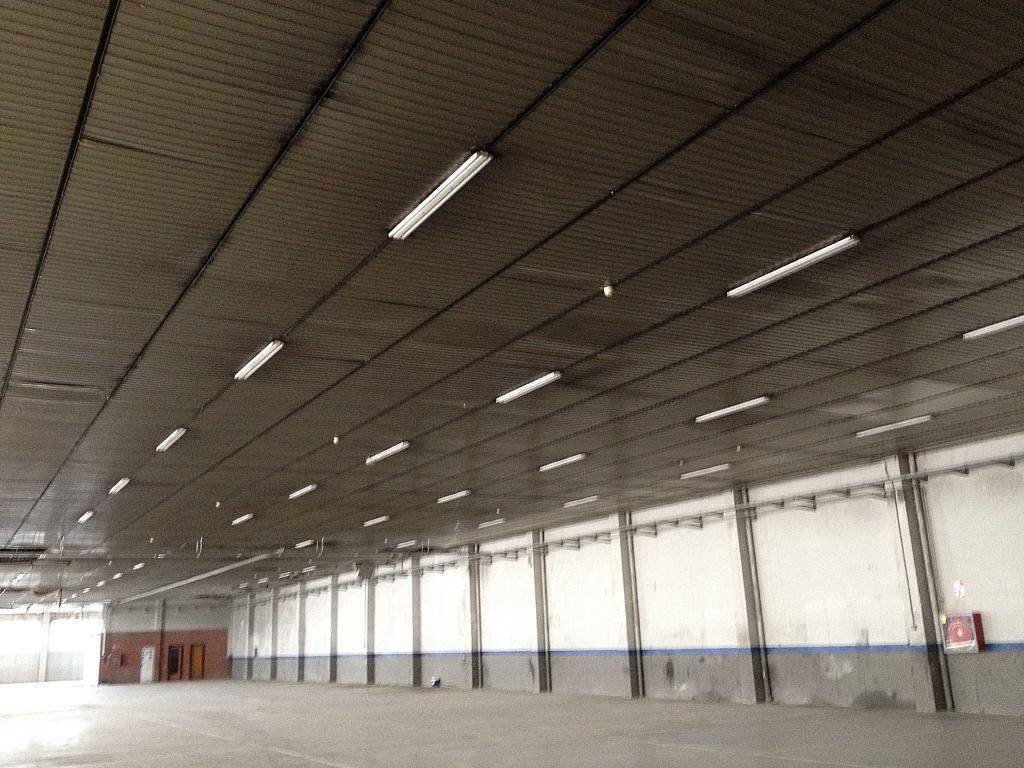 Detalles - Nave industrial en alquiler en calle Ramón Caselles, Polígon Sud-Oest en Sabadell - 240347955