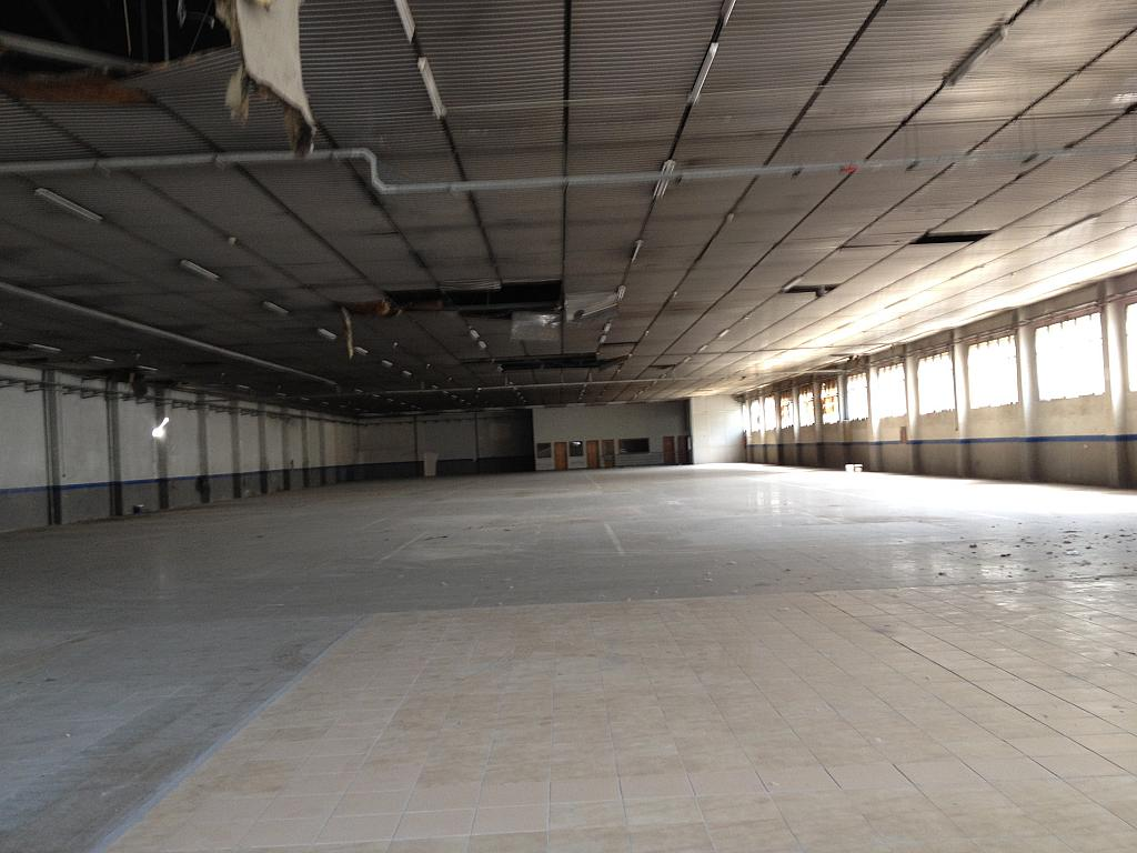 Planta baja - Nave industrial en alquiler en calle Ramón Caselles, Polígon Sud-Oest en Sabadell - 240348094